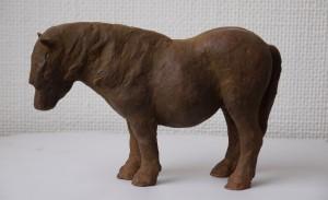 pony, uitverkocht