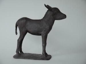 jonge ezel