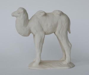 jong kameeltje